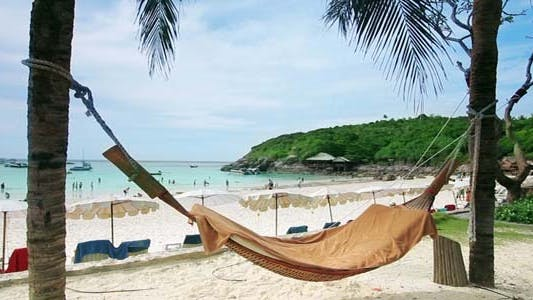 Cover Image for Empty Hammock In Exotic Beach