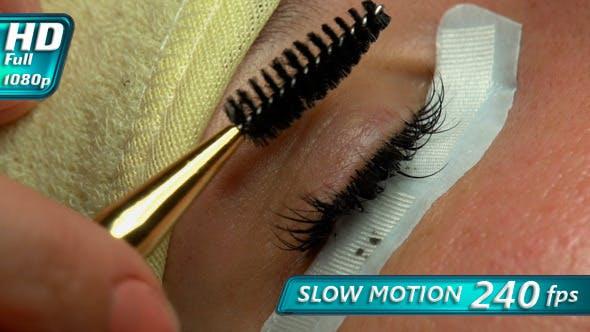 Thumbnail for Artificial Eyelashes