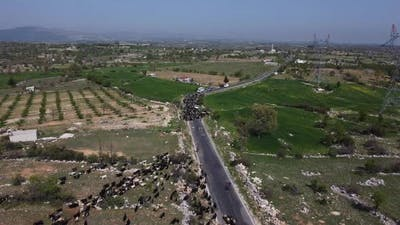 Wandering Goat Drone Highway