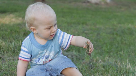 Thumbnail for Toddler Sitting On The Grass