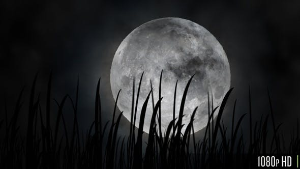 Full Moon or Harvest Moon in the Fall