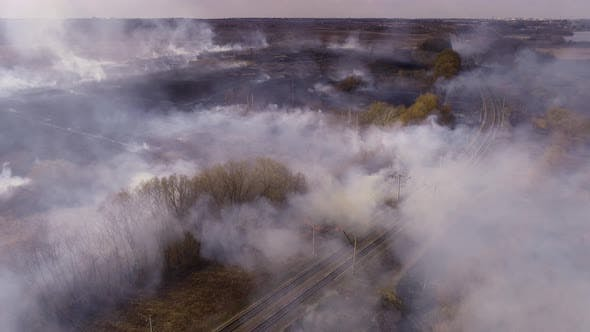 Fire, Dry Grass Lanes in Fire, Firefighters at Work, Disaster, Ecological Catastrophe