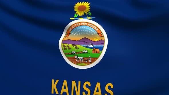 Kansas Flag 4K