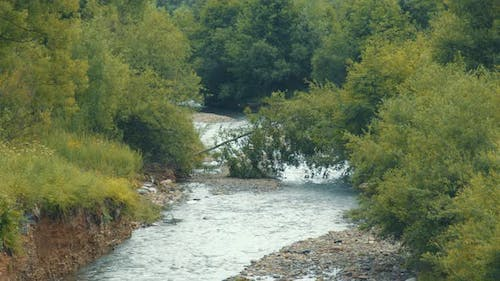 The Course of a Mountain River After Floods. Remains of Trees and Stones After the Flood in the