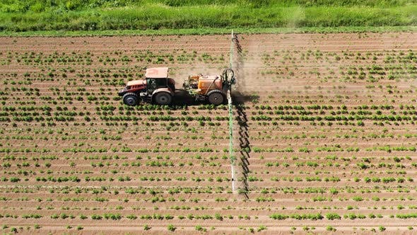 Thumbnail for Tractor Spraying Pesticides on Vegetable Field with Sprayer