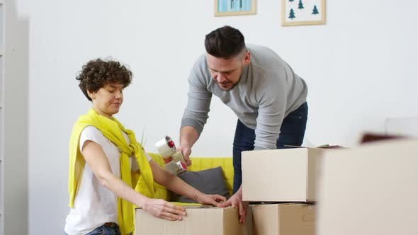Thumbnail for Caucasian Couple Packing Cardboard Boxes for Storage
