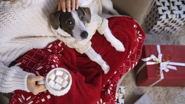 Thumbnail for Cozy Christmas Holiday Concept. Girl And Her Dog Relaxing At Home With Gifts And Cocoa.