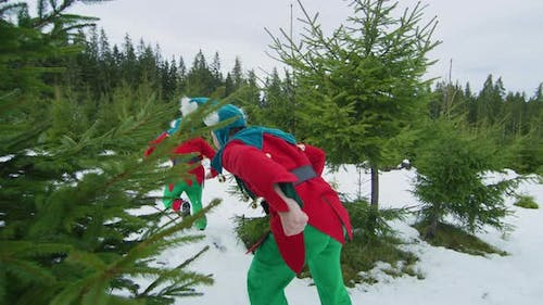 Elves running in the forest