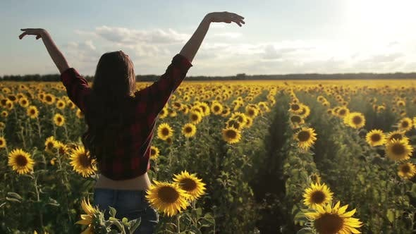 Thumbnail for Girl Standing with Arms Raised in Sunflower Field