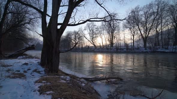 Thumbnail for Winter Sunrise on River Bank