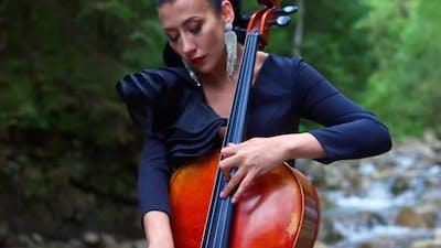 Attractive musician with cello