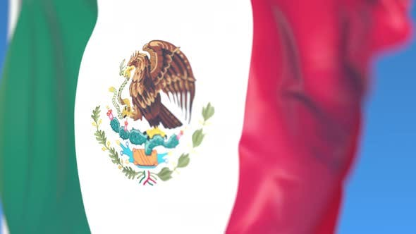 Thumbnail for Flying National Flag of Mexico