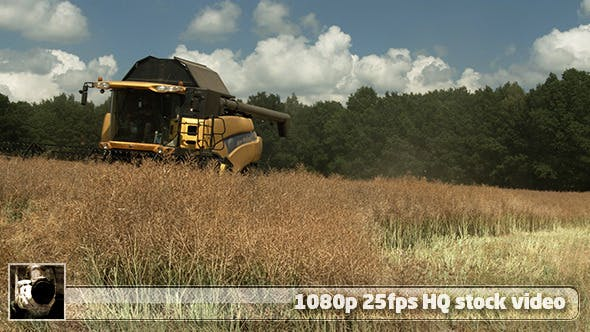 Thumbnail for Modern Harvester On The Field 11