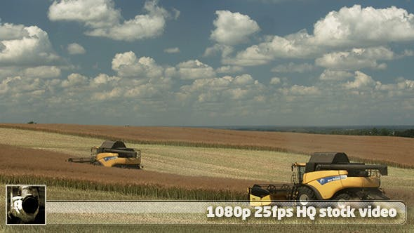 Thumbnail for Modern Harvester On The Field 13