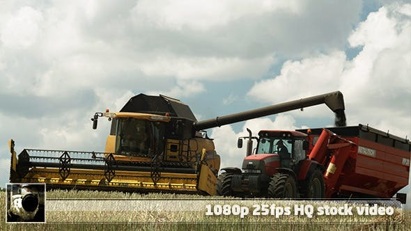 Thumbnail for Modern Harvester On The Field 15