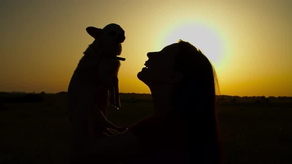 Silhouette of Woman Bonding with Lapdog at Sunset