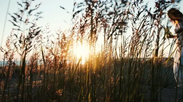 Thumbnail for Silhouette der Braut im Hochzeitskleid Walking in Gras am Meer bei Sonnenuntergang. Frau geht mit einem Blumenstrauß