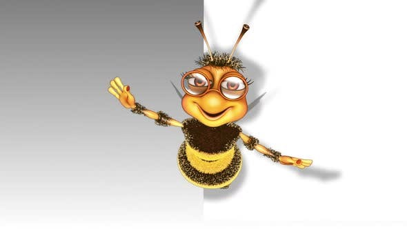 Cartoon Bee Show  Looped on White Background