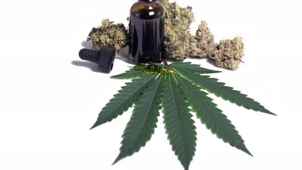 Thumbnail for Motion Display Of Cbd Cannabis Bud Oil Dropper With Leaf On White Background