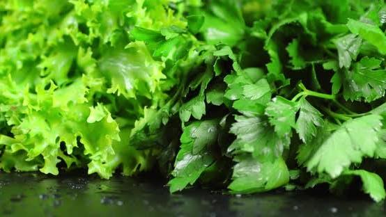 Parsley and Lettuce Rotates Slowly.