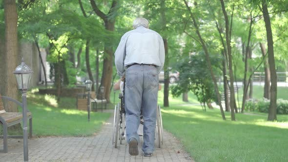 Thumbnail for Back View of Old Man Running with Wheelchair Along the Alley As Happy Disabled Woman Stretching