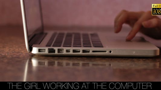 Cover Image for The Girl Working At The Computer 4