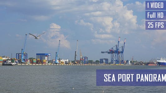 Thumbnail for Sea Port Docks And Seagulls