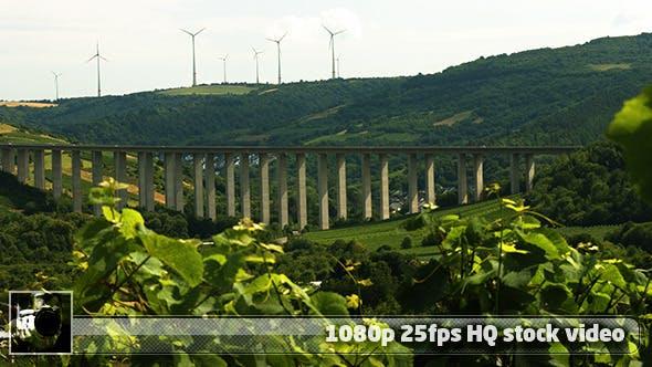 Moselle Valley Wineyard 4