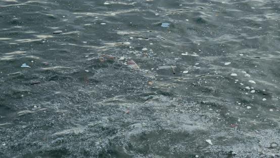 Thumbnail for Sea pollution