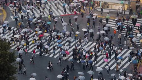 Shibuya Überquerung in Tokio Japan