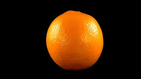 Cover Image for Oranges on a Black Background 6