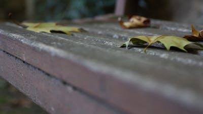Bench Slider Shot 01