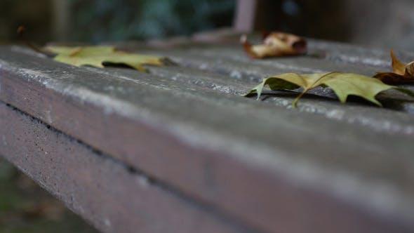 Thumbnail for Bench Slider Shot 01