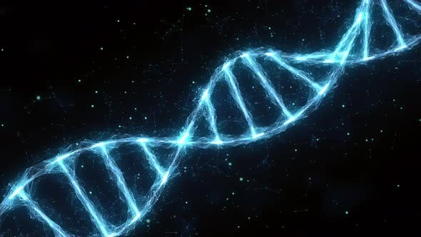 Thumbnail for Dna Strand Double Helix