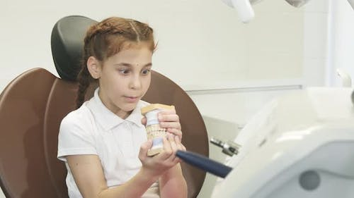 Surprised Girl Examines an Artificial Jaw