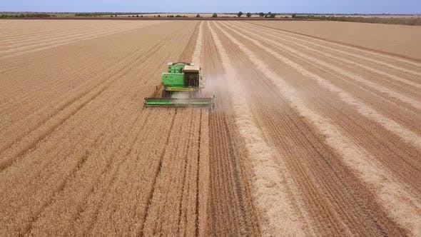 Thumbnail for Harvester Harvests Wheat