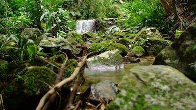 Tracking shot of a waterfall in the jungle.