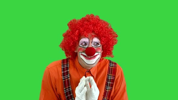 Cunning Clown Is Up To Something Having Plan Green Screen Chroma Key