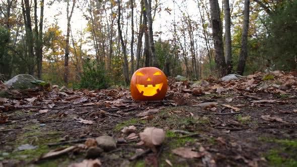 Thumbnail for Spooky Pumpkin Halloween Celebration