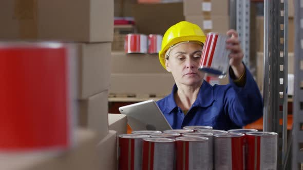 Thumbnail for Woman Stock-Taking in Warehouse