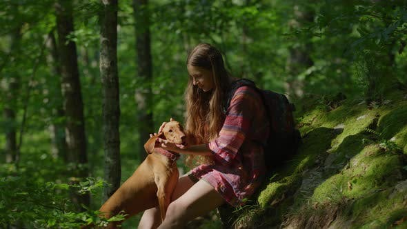 Thumbnail for Girl petting a brown dog