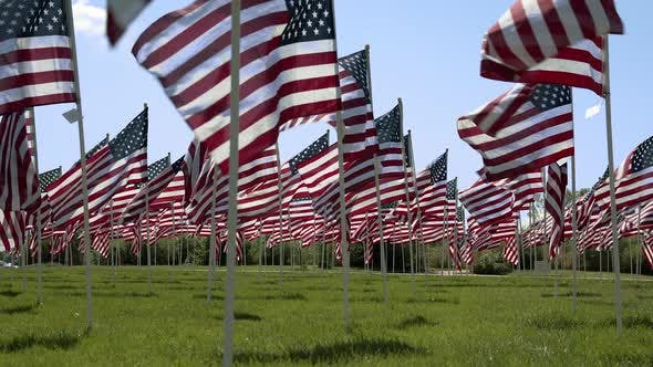 Low angle view of American Flags waving in the wind