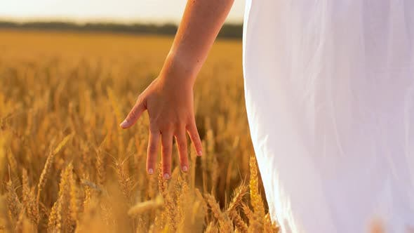 Thumbnail for Woman in White Dress Walking Along Cereal Field