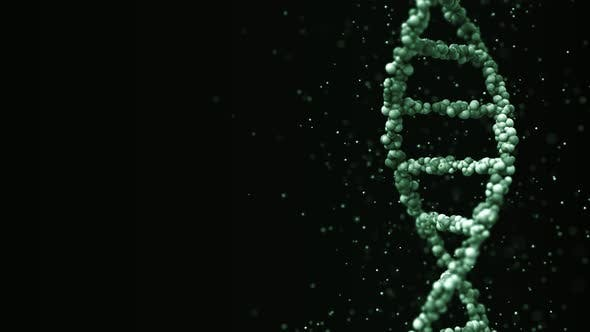 Thumbnail for Moving Green DNA Molecule with Particles