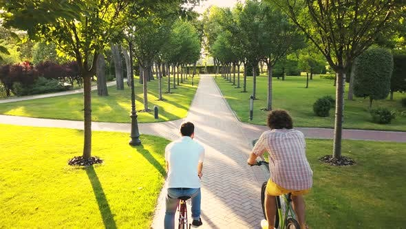 Two Male Friends Riding Bicycles in Park