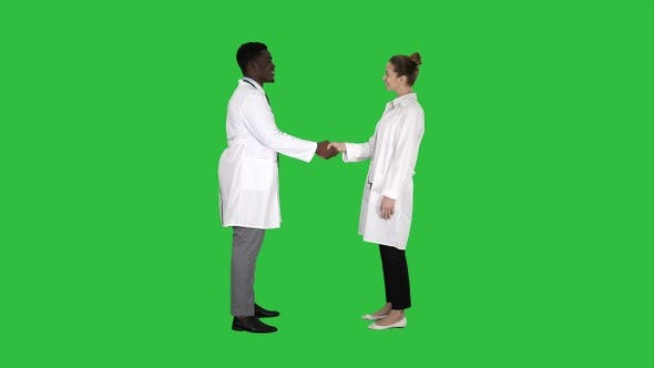 Thumbnail for Nice to meet you Doctors meet and shake hands on a Green