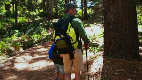 Father and son hiking with trekking poles