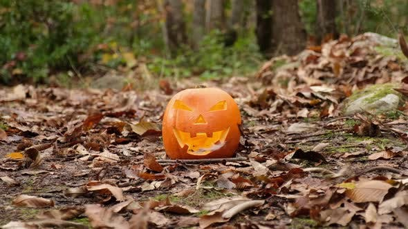 Thumbnail for Halloween Spooky Pumpkin Jack 'O Lantern