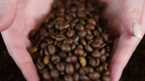 Thumbnail for Unrecognizable Woman Touching Coffee Beans
