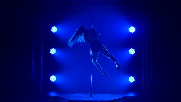 Thumbnail for Young Sexy Slim Woman Pole Dancing Striptease with Pylon in Night Club. Beautiful Hot Brunette